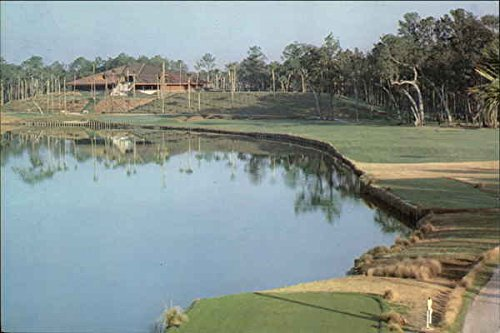 Tournament Players Club, Sawgrass Ponte Vedra, Fl Original Vintage Postcard