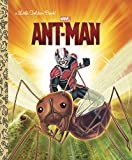 Image of Ant-Man (Marvel: Ant-Man) (Little Golden Book)