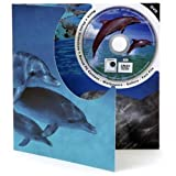 Dolphin DVD Theme Card - Blank Greetings Card For Any Occasion