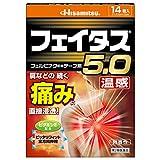 【第2類医薬品】フェイタス5.0温感 14枚入