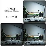 Ryham-Dimmbare-Augenpflege-Lese-LED-Schreibtischlampe-Touch-Sensitive-Control-USB-Lade-5W-ABS-Material-Trennbare-Pedestal-Nachtlicht-mit-3-Niveaus-Helligkeit-Schlaf-Schlafzimmer-Grn
