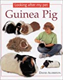 Guinea Pig (Looking After My Pet) (0754811565) by Alderton, David