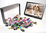 Photo Jigsaw Puzzle of LA-8210 Dog - Cav...