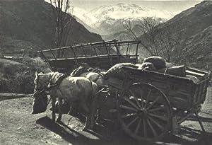Valle Rio San Francisco. Transporte Mercaderías carreta. Valley;1932