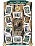 Discover Animals of the World Playing Cards
