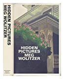 Hidden Pictures (0395360021) by Wolitzer, Meg