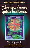 Adventures Among Spiritual Intelligences: Angels, Aliens, Dolphins & Shamans