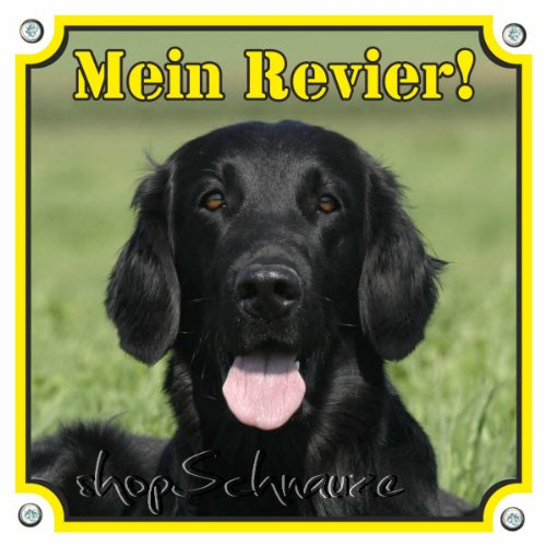 Hunde Warnschild - Flat Coated Retriever - , 20 x 20 cm