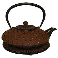 Reddish Orange Cast Iron Teapot with Trivet, 27 Oz Capacity