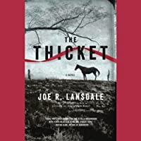 The Thicket (       UNABRIDGED) by Joe R. Lansdale Narrated by Will Collyer