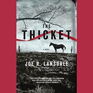 The Thicket Audiobook