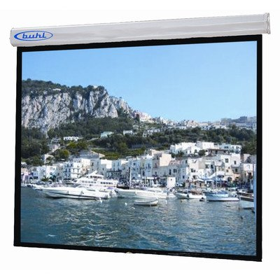 """Sorrento Matte White Electric Projector Screen Viewing Area: 70"""" H X 70"""" W"""