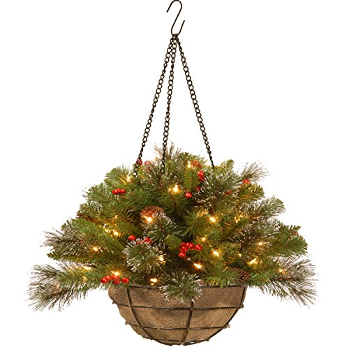 National Tree Crestwood Spruce Chain Hanging Basket, 20-Inch