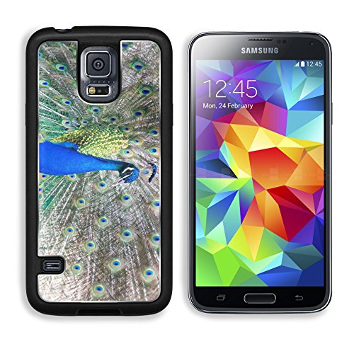 MSD Premium Samsung Galaxy S5 Aluminum Backplate Bumper Snap Case IMAGE ID 19902428 Beautiful male peacock displaying the colourful feathers of its fanned out tail in a mating ritual (Ritual Juice compare prices)
