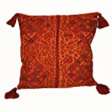 Laura Luna Textiles LL16A-34 Clochi Pillow, 20-Inch by 20-Inch