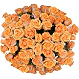 Flower Delivery - Impress With 25 CHAMPAGNE PREMIUM FRESH ROSES ON SALE! Fragrant Long Stem Roses And a FREE GIFT MESSAGE by Spring in the Air Luxury Roses - Guaranteed to WOW Your Gift Recipient!