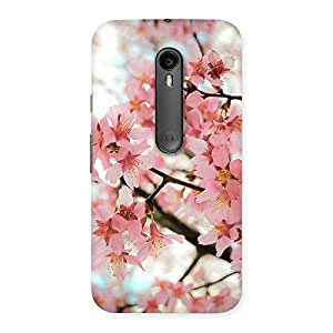 Special Cherry Blossoms Multicolor Back Case Cover for Moto G3