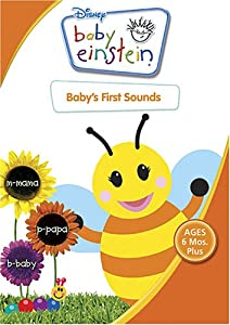 Baby's First Sounds: Discoveries for Little Ears