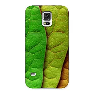 Enticing Leaf Pattern Multicolor Back Case Cover for Samsung Galaxy S5