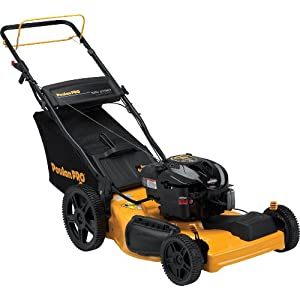 Poulan Pro PR625Y22RKP 22-Inch 190cc Briggs &amp Stratton 625 Series Gas Powered Side Discharge