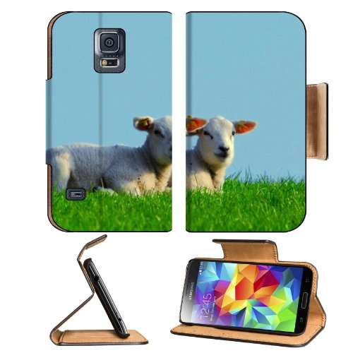 Baby Sheep Mutton Prairie Animals Samsung Galaxy S5 Sm-G900 Flip Cover Case With Card Holder Customized Made To Order Support Ready Premium Deluxe Pu Leather 5 13/16 Inch (148Mm) X 2 1/8 Inch (80Mm) X 5/8 Inch (16Mm) Luxlady S V S 5 Professional Cases Acc front-52964