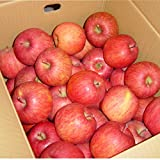 【訳あり】 山形産 サンふじりんご 10kg 約25?45玉前後