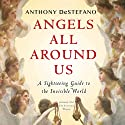 Angels All Around Us: A Sightseeing Guide to the Invisible World (       UNABRIDGED) by Anthony DeStefano Narrated by Anthony DeStefano