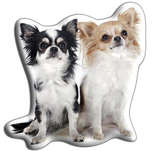 chihuahuas langhaarigen hund geschenk sch ne gro e kuschelkissen luxuri se strokable. Black Bedroom Furniture Sets. Home Design Ideas