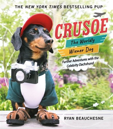 Crusoe Dog