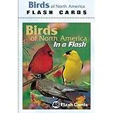 Impact Photographics Flash Cards Birds North American
