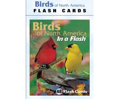 Impact Photographics IMP2FLC Flash Cards Birds North American