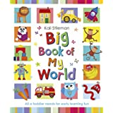Big Book of My Worldby Kali Stileman