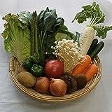 有機・無農薬野菜 10点セット