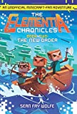 img - for The New Order: An Unofficial Minecraft-Fan Adventure (Elementia Chronicles) book / textbook / text book