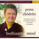 Bodhisattva Mind [Box]