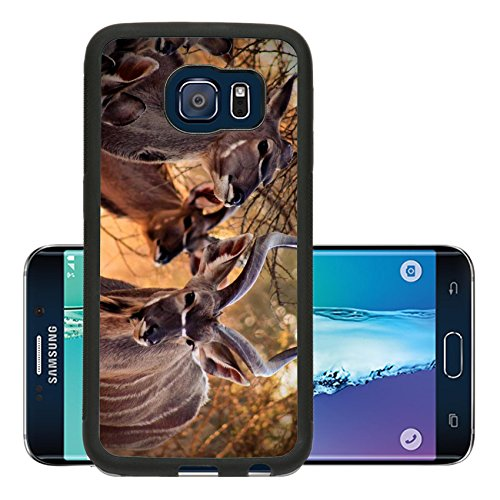 Liili Premium Samsung Galaxy S6 Edge Aluminum Snap Case Kudu Family Bull and Ewe in Bushveld Under Thorn Tree IMAGE ID 15012792 (Kudu Edge compare prices)