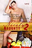 Nicely Naughty: Volume 2