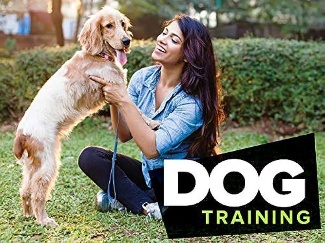 Dog Training 101 Season 1 Episode 1