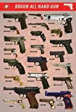 "J-4022 Bbgun Guns Collection Poster Size 24""x35""inc"