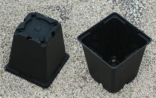 Viereck-Container-Töpfe 8 x 8 x 8,5 cm 1 Stck