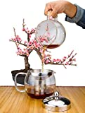 Glass Teapot with Infuser for Blooming and Loose Leaf Tea Pot by Cozyna, 41oz (36oz to Strainer) | 1.2 Liter, Lotus
