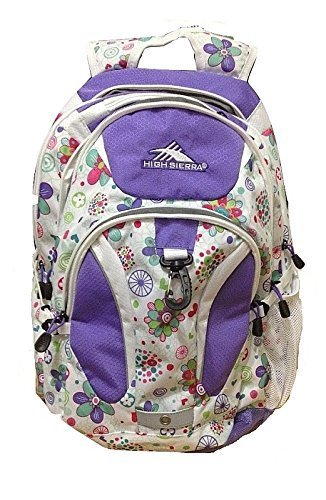 High Sierra  Laptop Backpack for 15-Inch