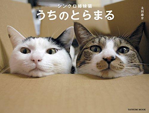 シンクロ姉妹猫 うちのとらまる (タツミムック)