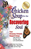img - for Chicken Soup for the Recovering Soul: Your Personal, Portable Support Group with Stories of Healing, Hope, Love and Resilience (Chicken Soup for the Soul) book / textbook / text book
