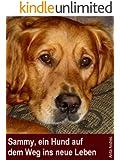 Sammy, ein Hund auf dem Weg ins neue Leben