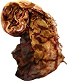 Collection XIIX Womens Infinity Scarf (Pinecone62215)