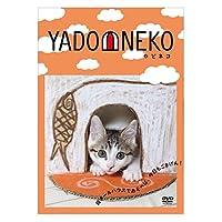 YADONEKO - やどネコ - [DVD]