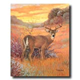 Whitetail Buck Deer Big Antler Rack Sunset Cabin Home Decor Wall Picture 16x20 Art Print