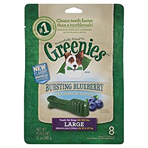 GREENIES Bursting Blueberry Dental Chews Large Treats for Dogs - 12 oz.