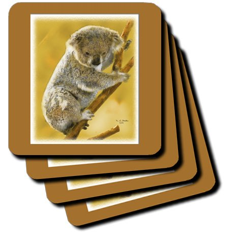 Baby Koala Images front-1047745